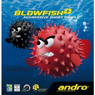 Andro | Blowfish
