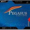 Nimatsu | Pegasus Cyclone